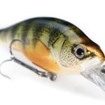 Tips – Walleye Fishing